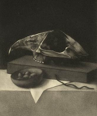 still life with skull and bowl