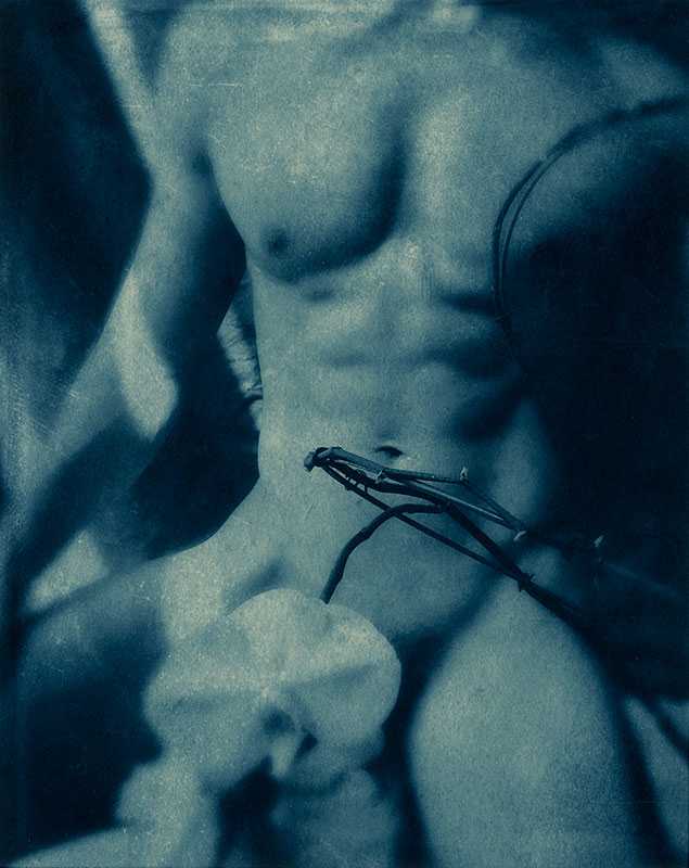 nude of a man with an orchid covering his phallus