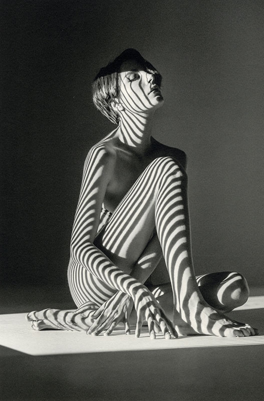 nude in striped shadows